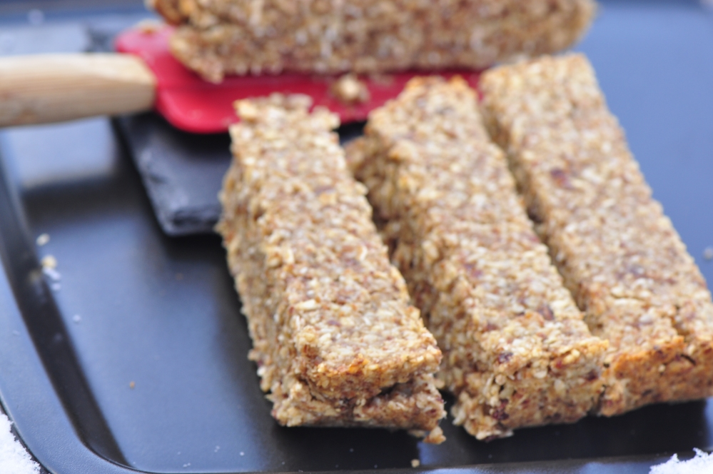 Vegan Medjool Date Bars