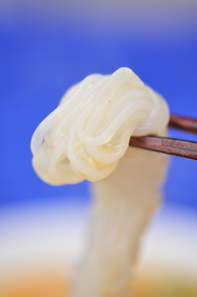 This is what a konjac noodle looks like.